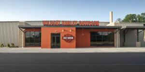 Wildcat Harley Davidson